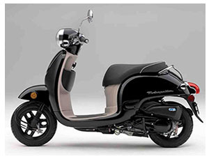 Las Vegas Mobility Scooter Rentals Maxima